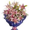 Pink Stargazer Lilies 6 Pink Lilies