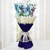 Sparkle Purple 10 Orchids
