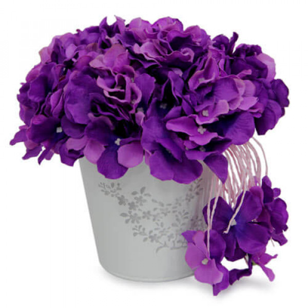 Purple Flower Bunch