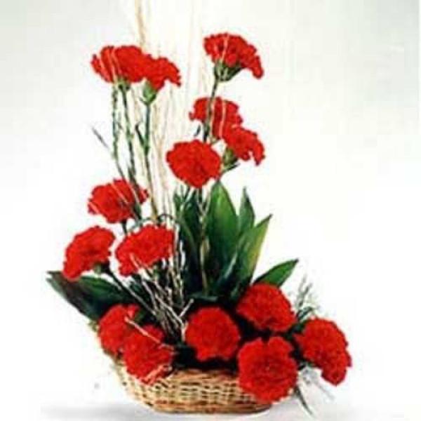 Romantic Affair 15 Red Carnations