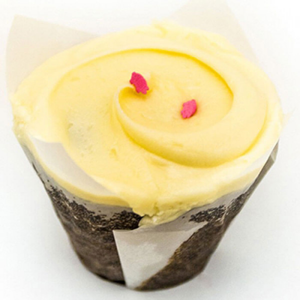 Butterscotch Top Blue 6 Cup Cakes