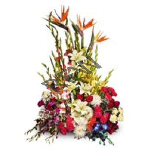 Glamorous Encounter 100 Mix Roses