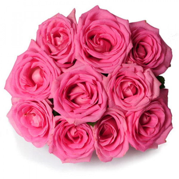 Perfect Love 10 Pink Roses