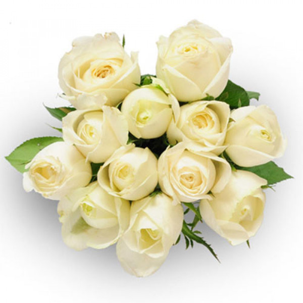 Always And Forever 12 White Roses