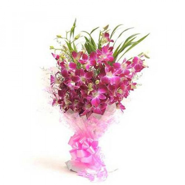 Perfect N Elegance 6 Purple Orchids