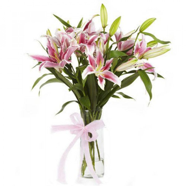 Blooming Beauty 6 Pink Lilies