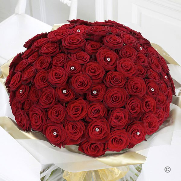 Romantic Tickle 100 Red Roses Bunch