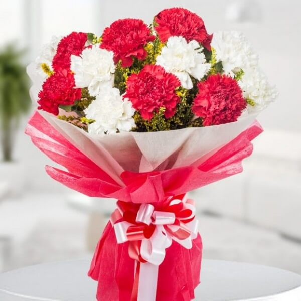6 Red & 6 White Carnations