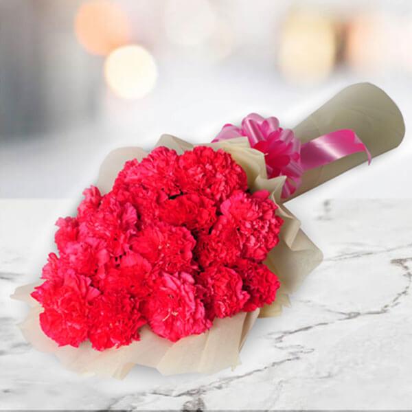 A Big Hug 20 Pink Carnations Online