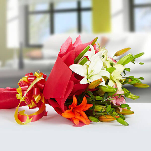 Exotic 12 Mix lilies